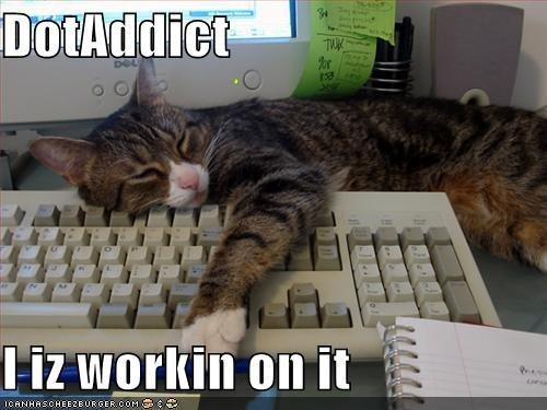 DotAddict Cat